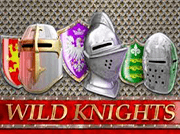 Barcrest Wild Knights slot