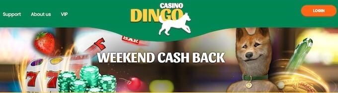 promocja weekendowy cashback w kasynie Dingo