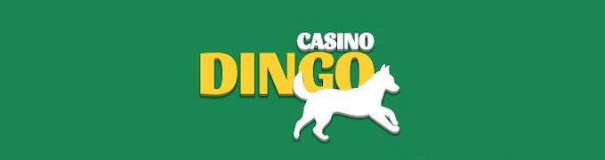 Dingo Casino recenzja nowego kasyna online